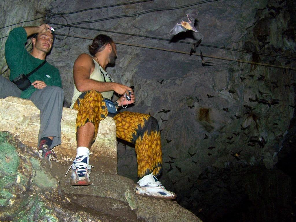 chauve souris grotte lanquin guatemala