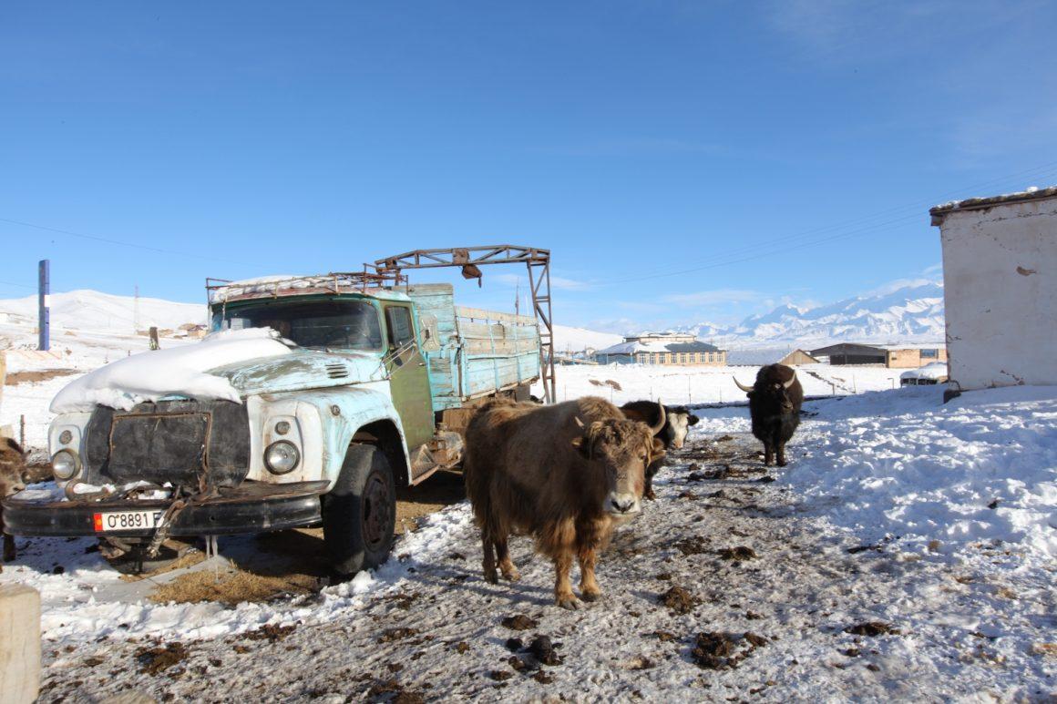 visiter Kirghizistan hiver