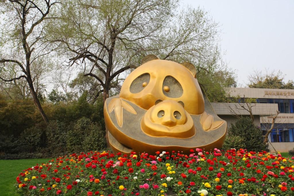 centre de recherche et d'élevage du panda géant Chengdu Sichuan