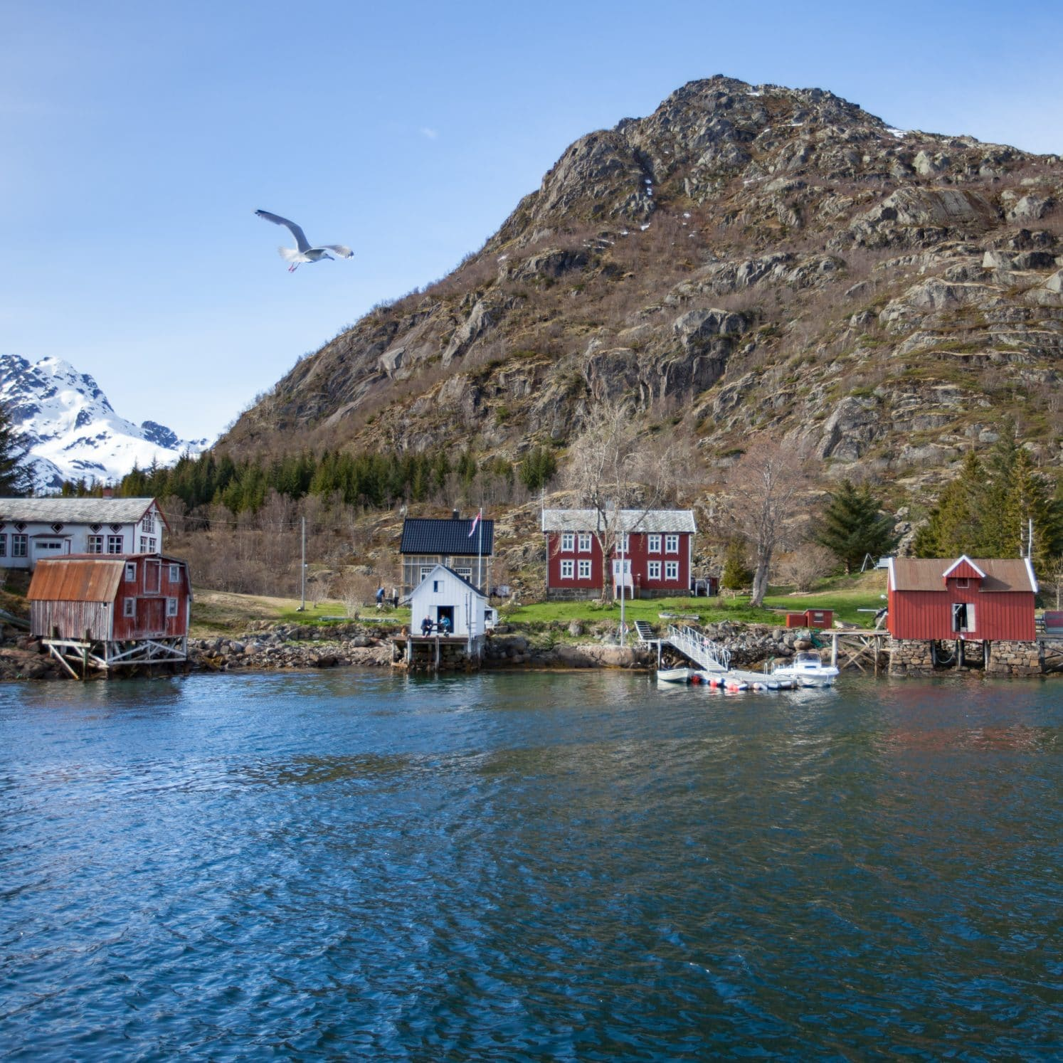 village fjord norvège lofoten