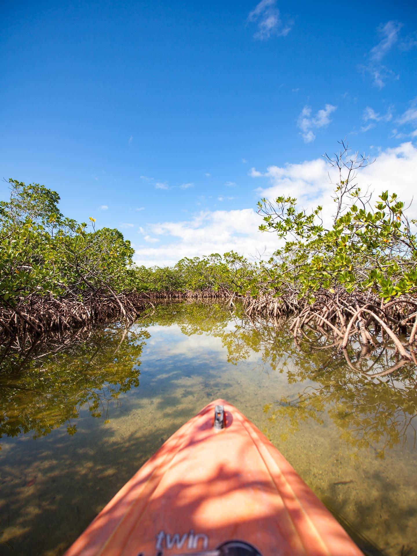 Voyage aux Bahamas Grand Bahama