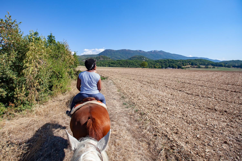 balade cheval Valence