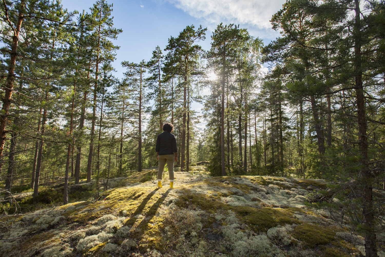 parc national Nuuksio